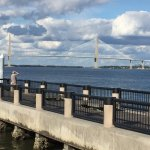 A pic of the Bridge from north of Waterfront Riley Park