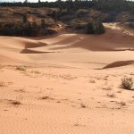 Coral Pink Sand Dunes in southern Utah are amazing. Soft pink sand, like walking on the beach.