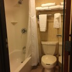 Foto de Holiday Inn & Suites Duluth-Downtown