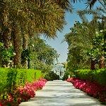 Photo de Desert Palm Dubai