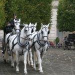 Christiansborg Palace - Exercising the Royal Horses