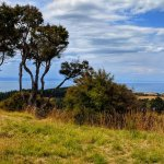 The Farm at Cape Kidnappers Photo