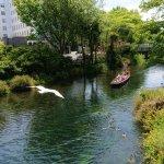 Photo of Avon River