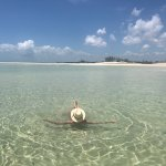 Beautiful water at incoming tide
