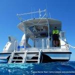 Reef tour