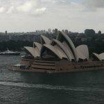 opera house from bridge