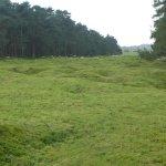 Shell Pocked Fields