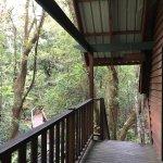 Foto de The Mouses House Rainforest Retreat