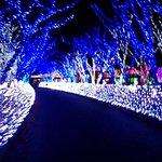 Foto de Let's Run Park Busan Gyeongnam