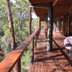 Billabong Retreat Sydney照片