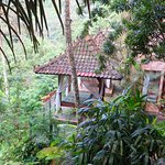 Lovely spa location overlooking the Ayung River.