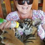 Safari Park Open Zoo Foto