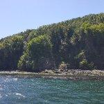 Bilde fra Quilun Ecoturismo Marino