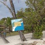 Photo de Malcapuya Island