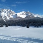Photo of Chalet Val di Rabbi