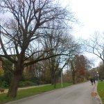 Vondelpark Foto