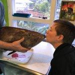 Kissing a black grouper