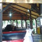 соревнования на быках за 500 грн