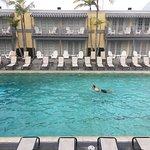 Beautiful heated olympic size pool