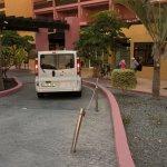 Photo of Marino Tenerife