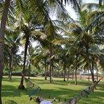 Photo of Dona Sylvia Beach Resort
