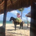 Lunch mariachi on horseback at Las Olas
