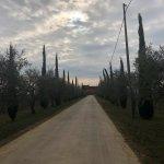 Bilde fra Locanda del Bugiardo