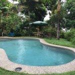 Wonderful Pool at Tiskita
