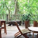 Beautiful dining area;also botanical gardens