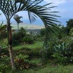 Ka'awa Loa Plantation Foto