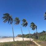 Zdjęcie Nosara Beach (Playa Guiones)