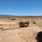 Photo of Inverdoorn Game Reserve