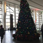 Christmas Tree in the Grand Hall