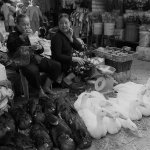 Traditional Market