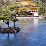 Kinkaku-ji (Goldener-Pavillon-Tempel) Foto