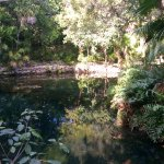 صورة فوتوغرافية لـ Grand Sirenis Riviera Maya Resort & Spa