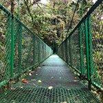 Photo of Selvatura Park