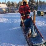 Dog sledding rig, Arctic Range Adventure