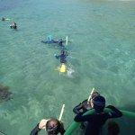 Фотография Aquascene Charters