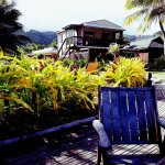 Bild från Muri Beach Resort