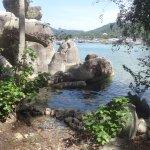 Zdjęcie Sensi Paradise