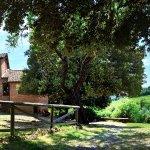 Photo of Agriturismo le Caggiole