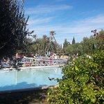 Photo of Club Marmara Madina
