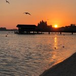 Foto de Sofitel Dubai The Palm Resort & Spa