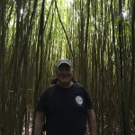 Hike through the bamboo forest fun but slippery good trail shoes recommended
