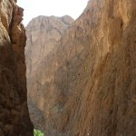 Photo of Todgha Gorge
