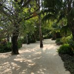 Beautiful sandy pathways all over the island