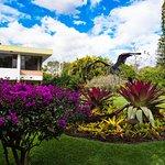Hotel Bougainvillea Foto