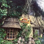Photo de Wizards Thatch at Alderley Edge