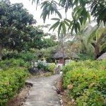 Foto de Flamingo Villas Club